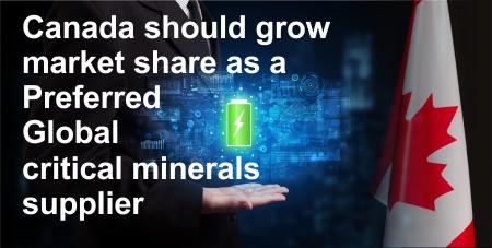 Critical Minerals Pic